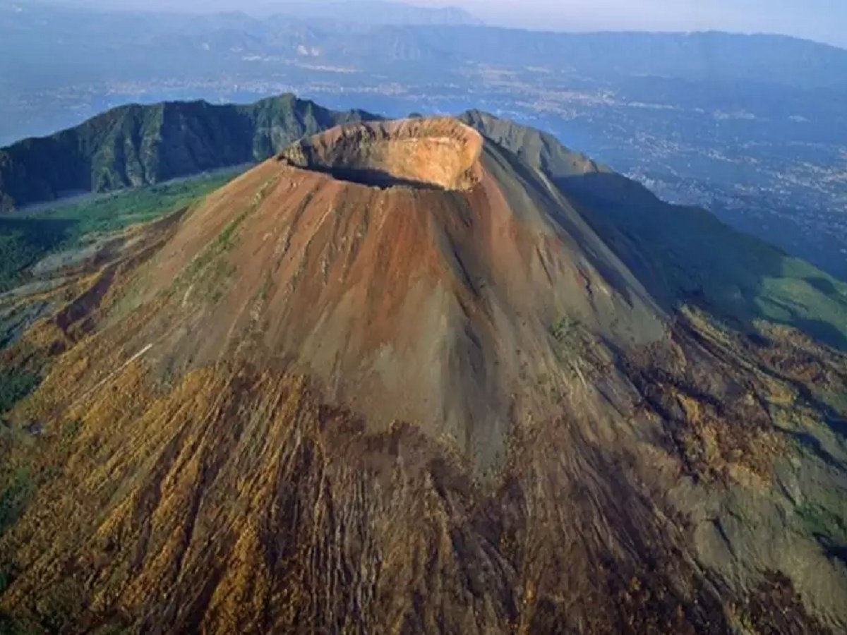 Volcano heat had turned the brain of a man into grass in 79 AD
