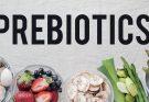 Feed Prebiotics Market